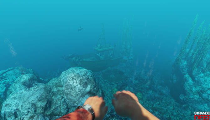 Stranded Deep cracked