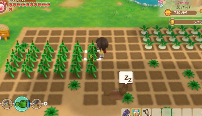 STORY OF SEASONS Friends of Mineral Town cracked