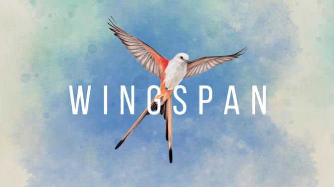 Switch Wingspan hero