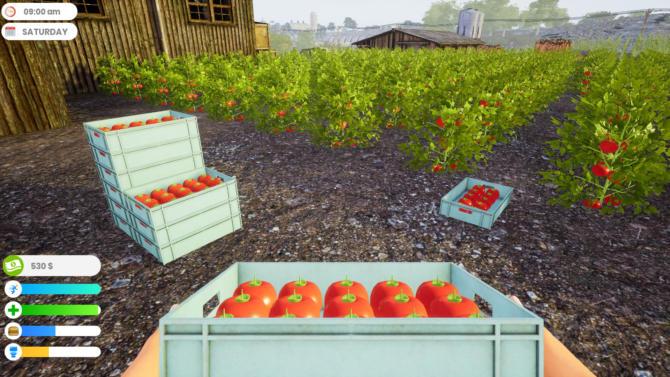 Farmer Life Simulator cracked